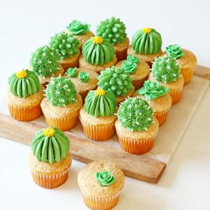 Alana Jonesmann Cactus.jpg