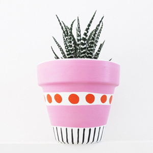 This Way To The Circus Plant Pot.jpg