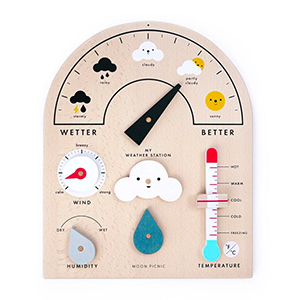 Weather Station Annual.jpg