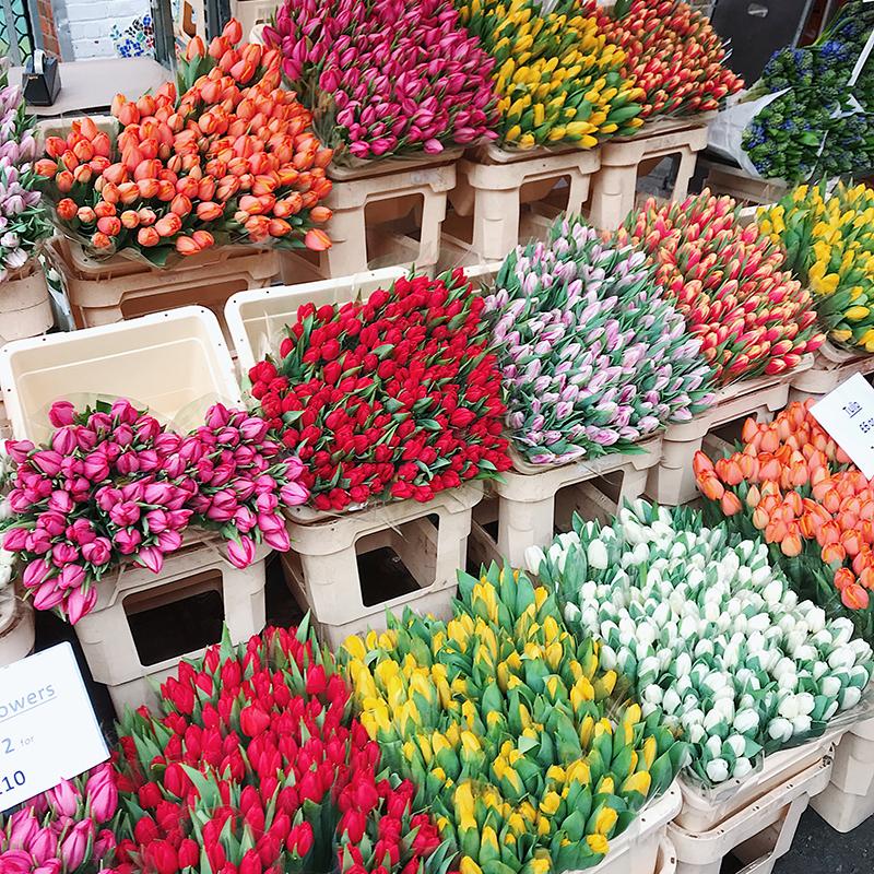Columbia Road Flowers.JPG