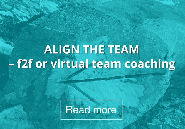 Align-the-team.jpg