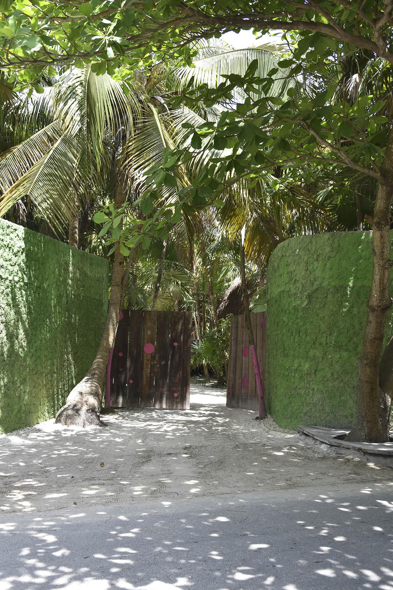 green-walls-tulum-road