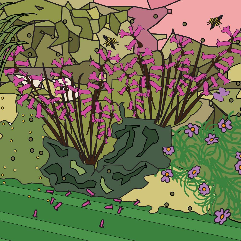 petals-flowerbed-detail