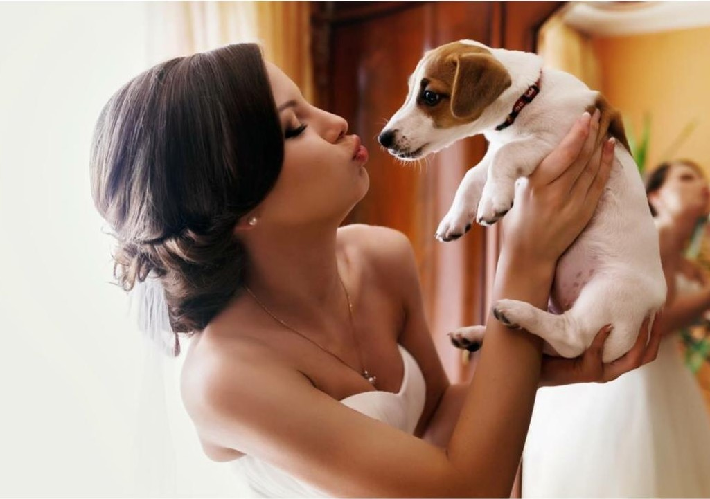 A portion of all makeup services goes towards animals in need.