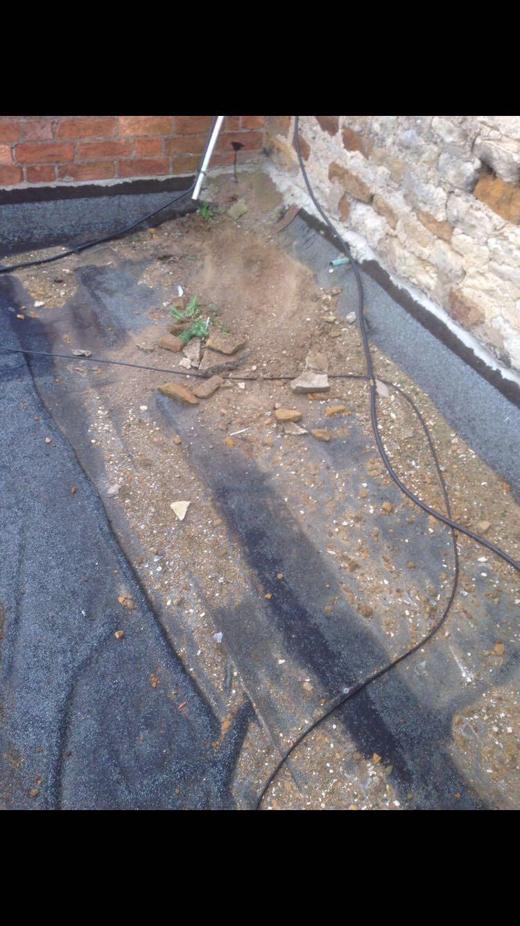 Before:  Pub toilets felt roof leaking everywhere