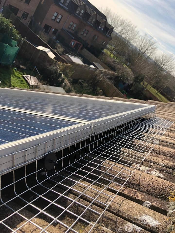 d haynes roofing, milton keynes roof repair, northamptonshire roofer, bedford roofing, solar panel.jpg