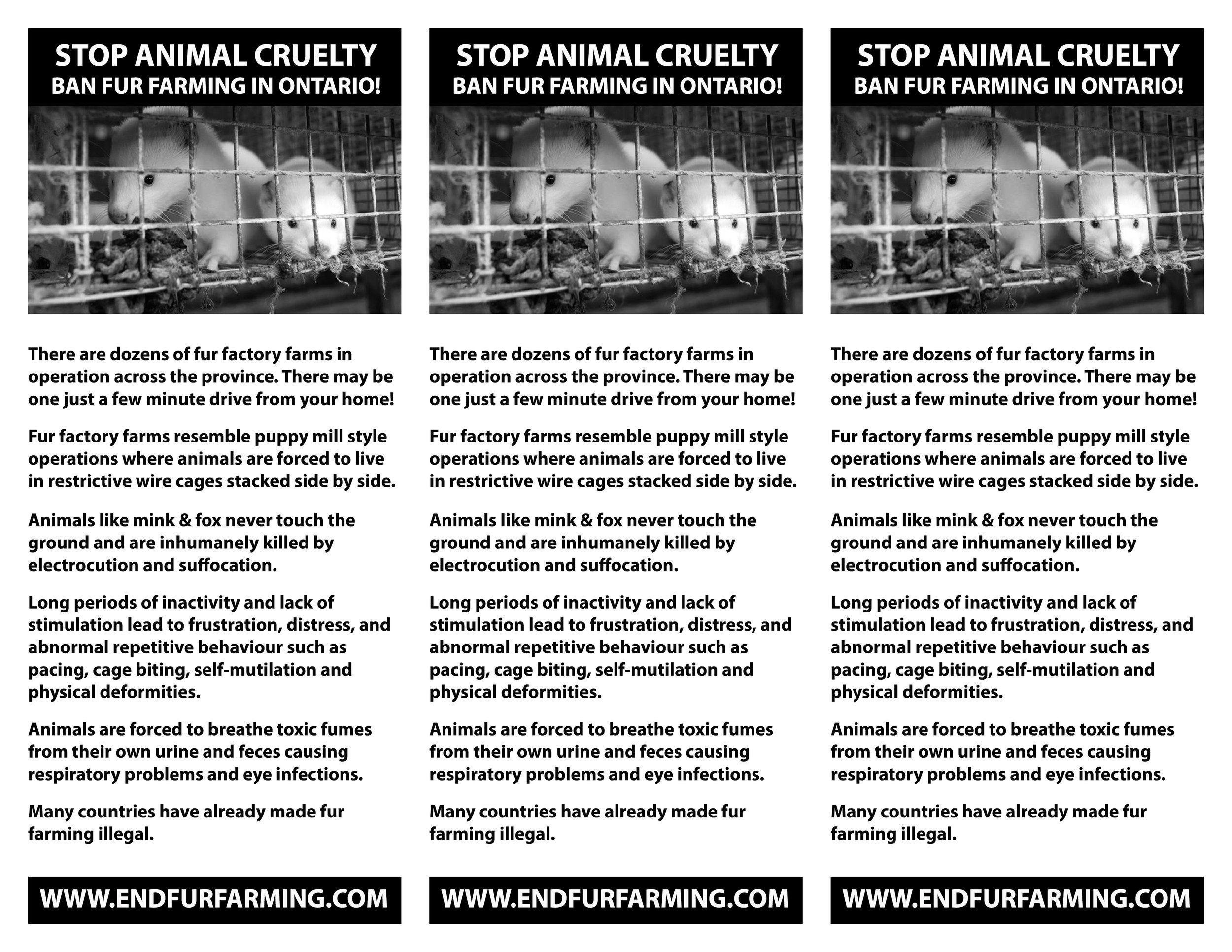 end fur farming flyer new 2017.jpg