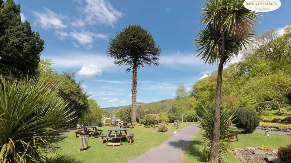 30 acres of gardens and woodlands,  including the historic castle of Dolbadarn.