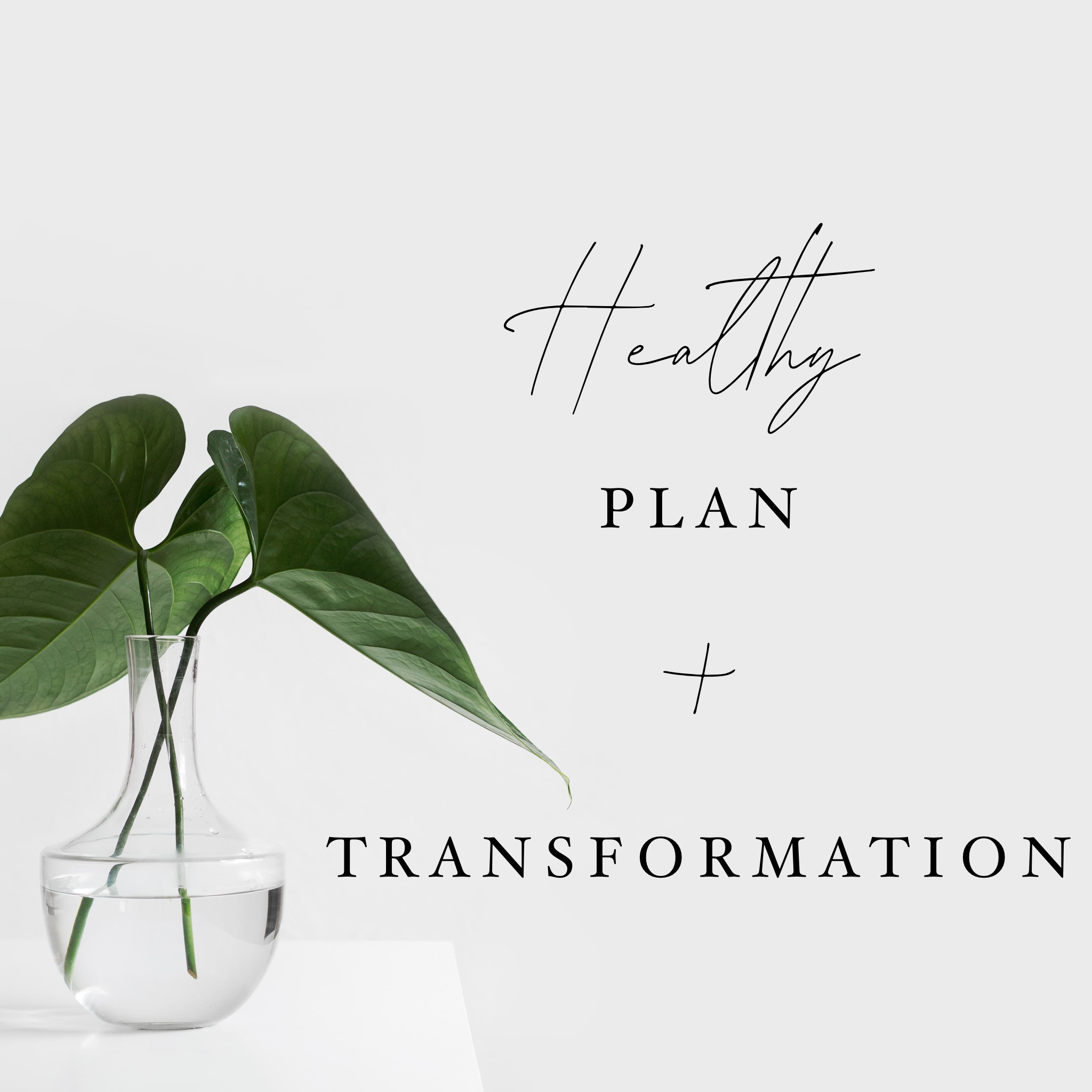 Healthy Plan + Transformation Artwork.PNG