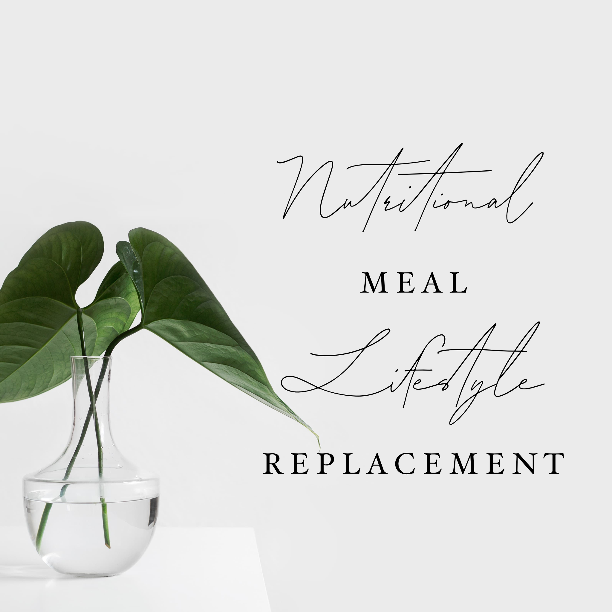 Nutritional Meal + LifeStyle Replacement Artwork.PNG