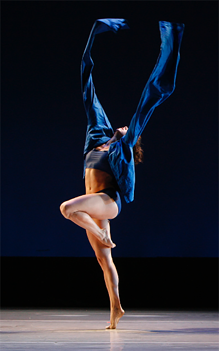 Aria  (2008)  at The Joyce; photographed by Carol Rosegg.