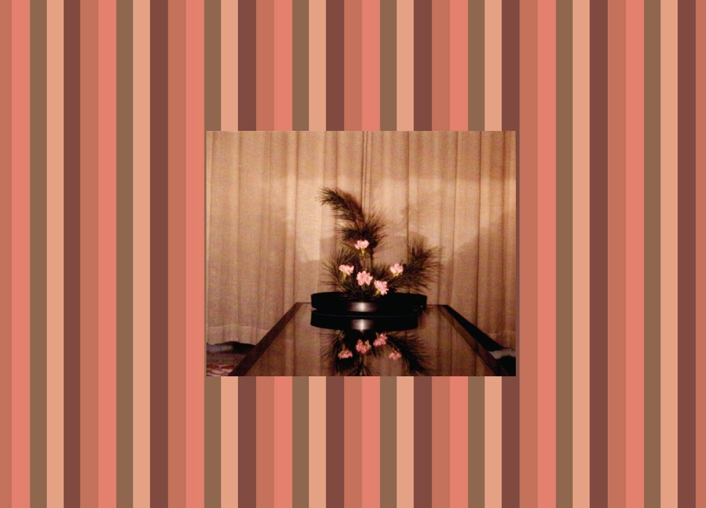 fc279-pinkflowerspine-01.jpg