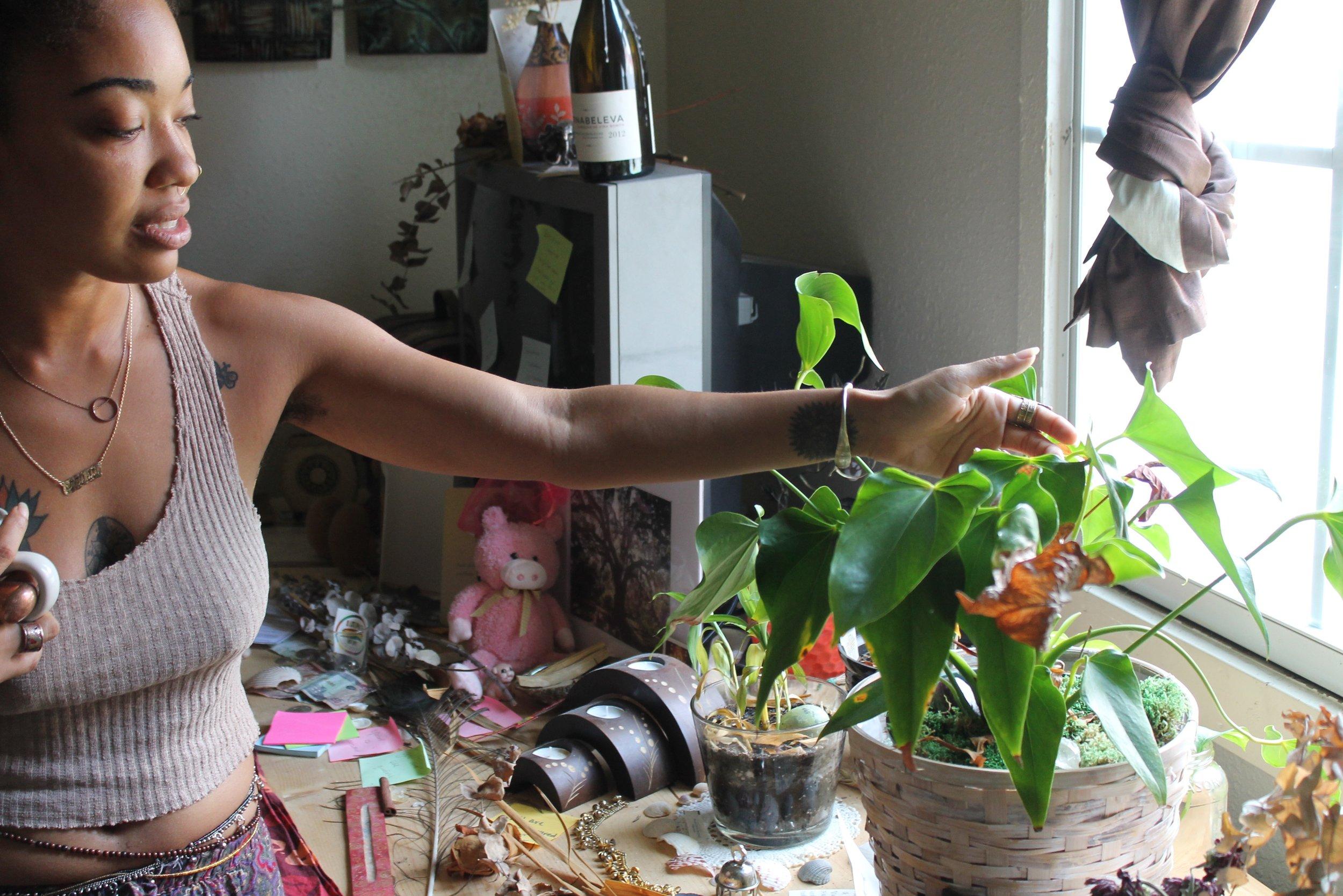 bf271-blackpeoplewithplants_gypsi_collectionofcollectionsblackpeoplewithplants_gypsi_collectionofcollections.jpg