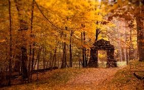 Autumn Gate.jpg