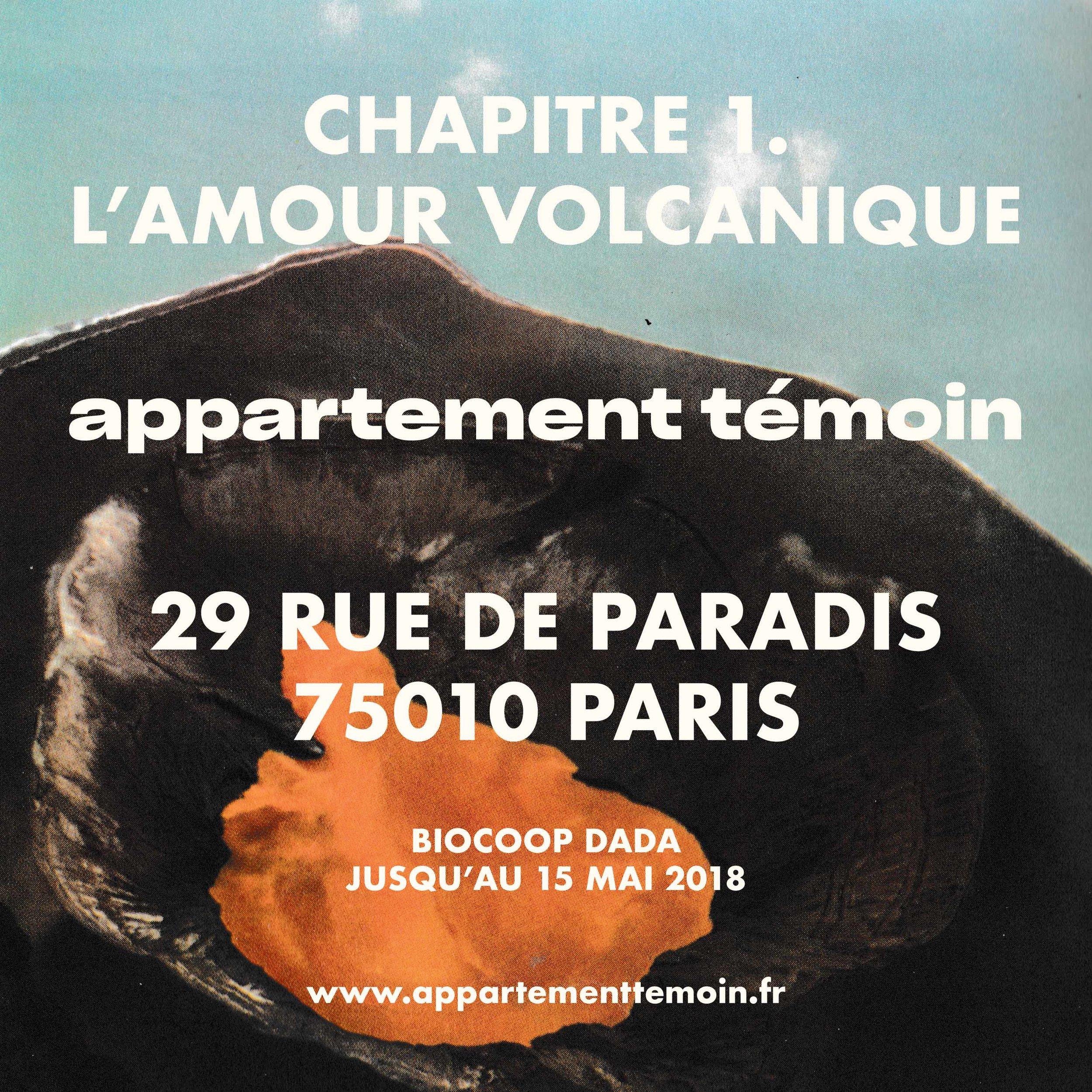 Chapitre 1. L'amour volcanique