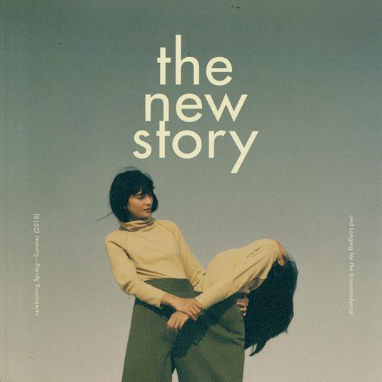 the new story x appartement témoin