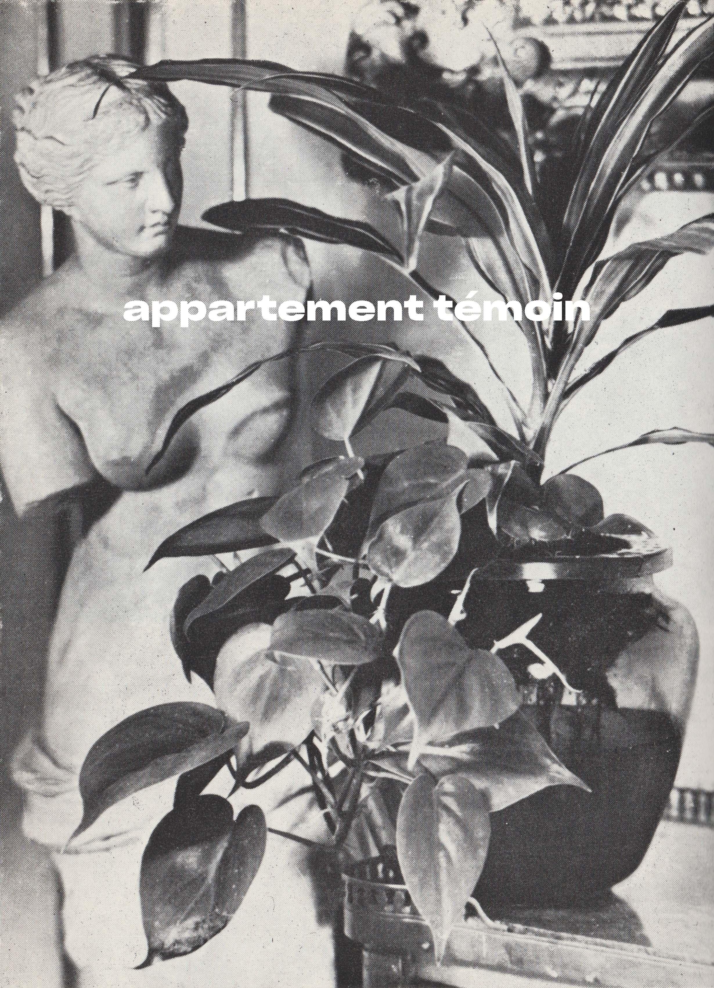 Chapitre 5. Plantes d'intérieur