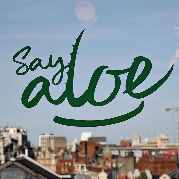 Say-Aloe-1.png