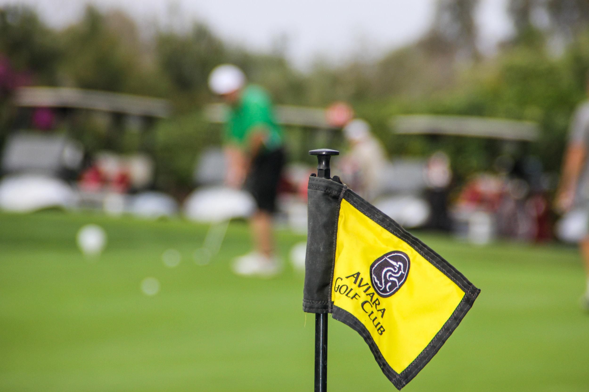 Forte_Golf_Tournament_2016_034.jpg