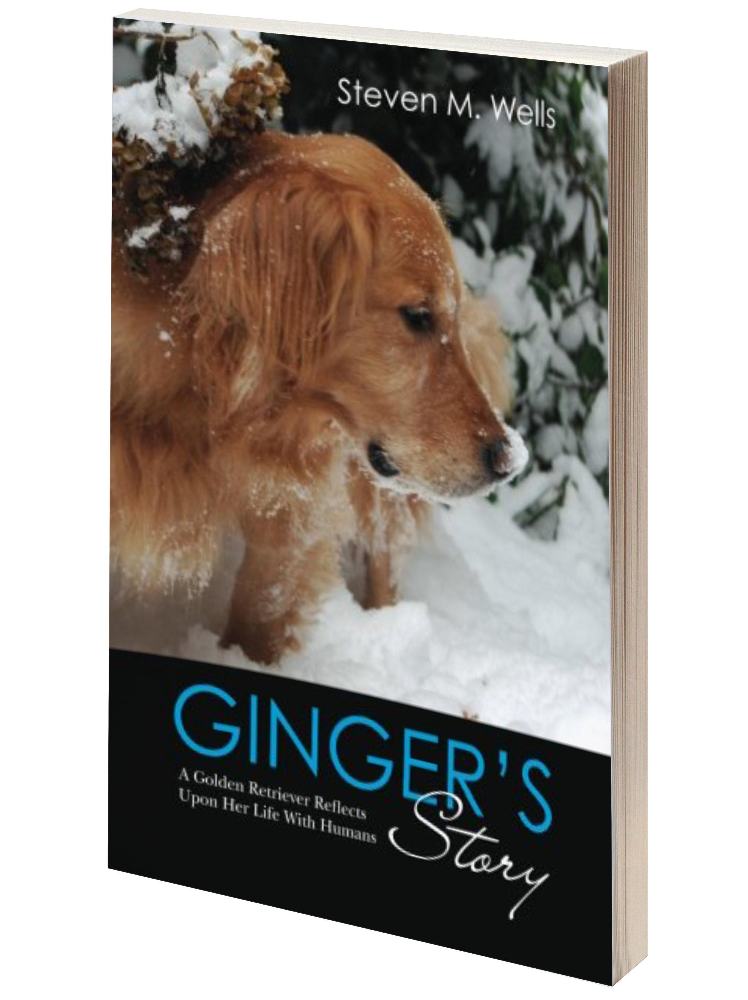 book-cover-GS.jpg