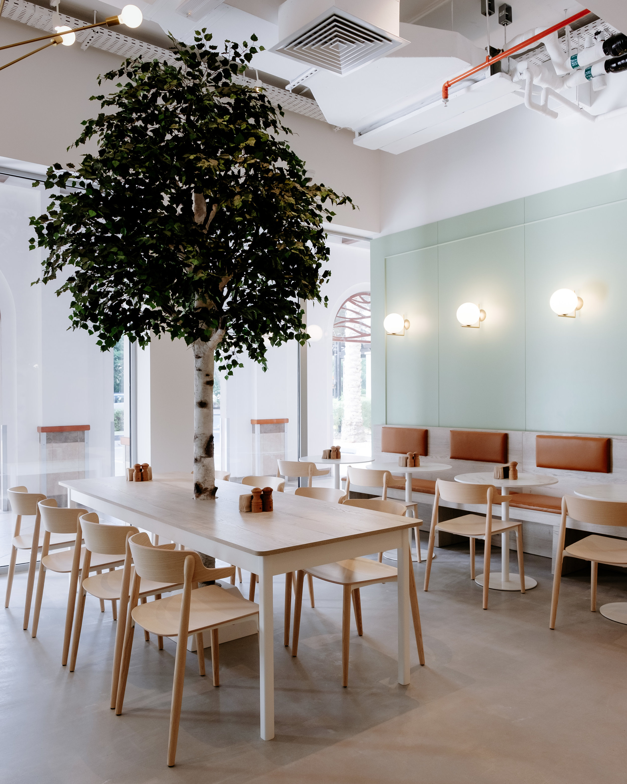 Birch Tree Cafe 100819-2.jpg