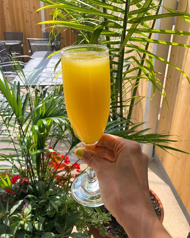 $5 mimosas during brunch!!! Today, tomorrow and every weekend.