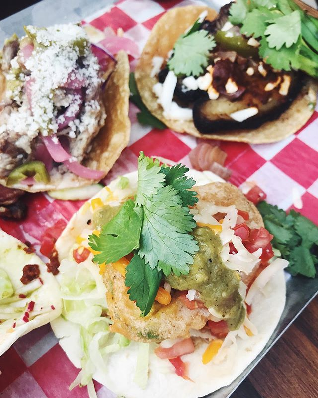 Ah yes let us feed your feed with tacos #ohoho #TACOS #theoldplankchicago