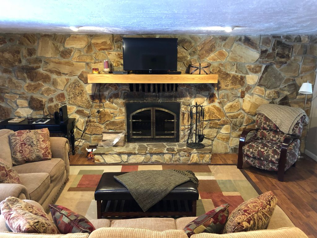 Living room features a wood burning fireplace and pull out couch