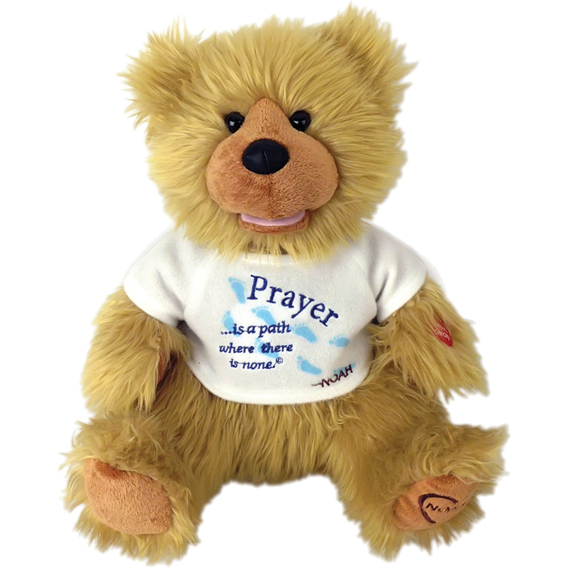 I want to share the story of the Noah Bears with you. We created these Bears many years ago, for adults seeking comfort and solace. Hundred of thousands of people have received the Prayer Bear or the Feel Better Bear and know that someone loves them, and is wishing them the very best. To order your Noah Prayer Bear on Amazon click here  http://bit.ly/PrayerBear
