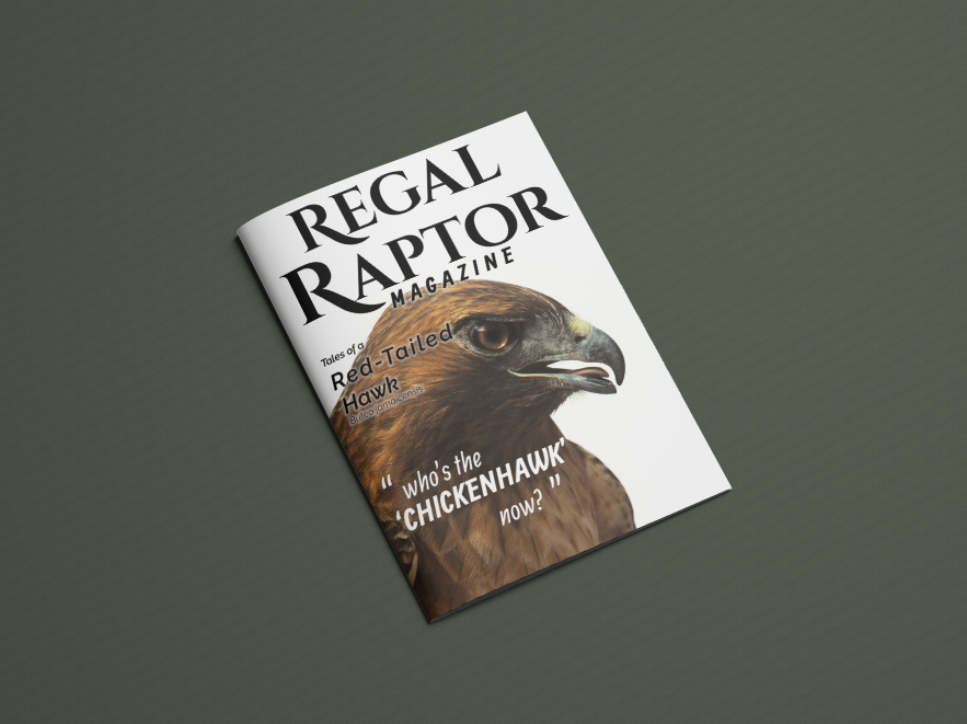 Front cover of  Regal Raptor