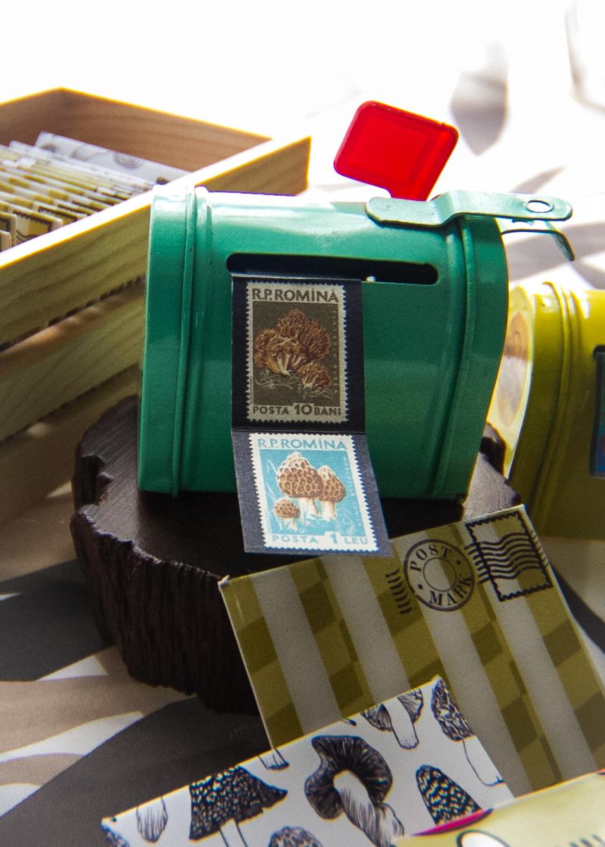 Miniature mushroom postage stickers and envelopes I designed