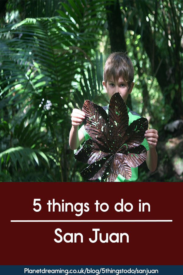 5 things to do in San Juan red pin.png