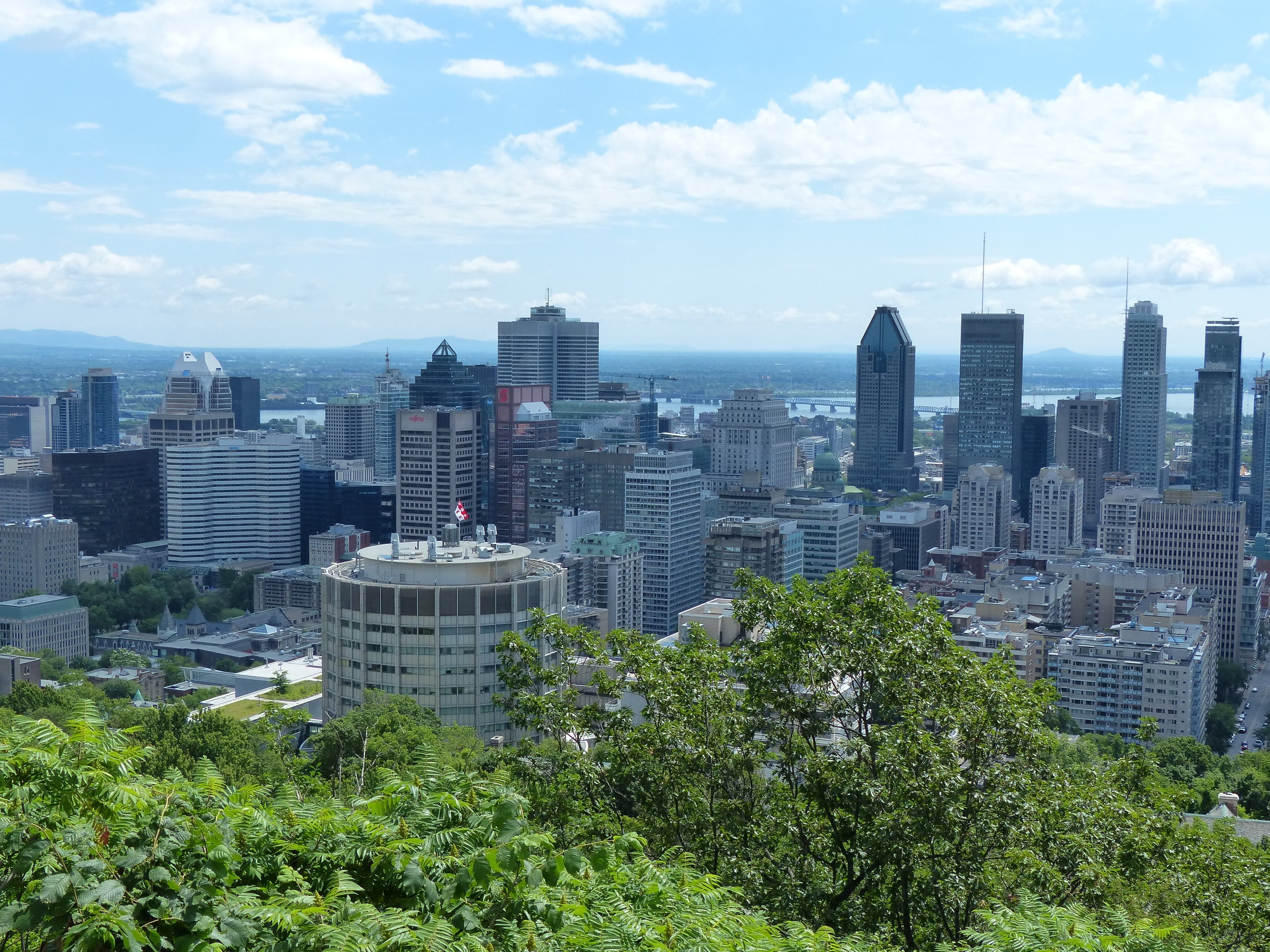Views from Mount Royal