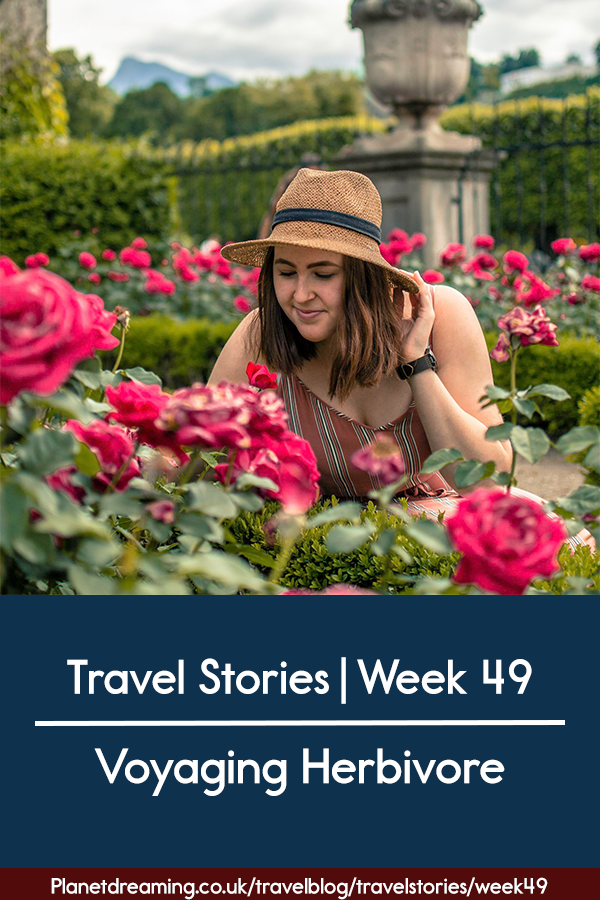 travel stories week 49 blue pin.png