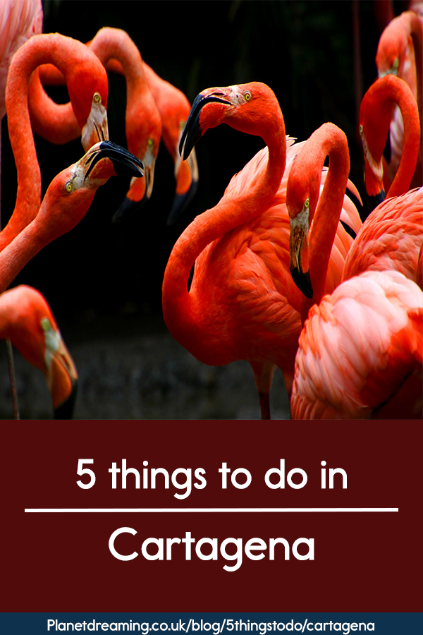 5 things to do in Cartagena red pin.png