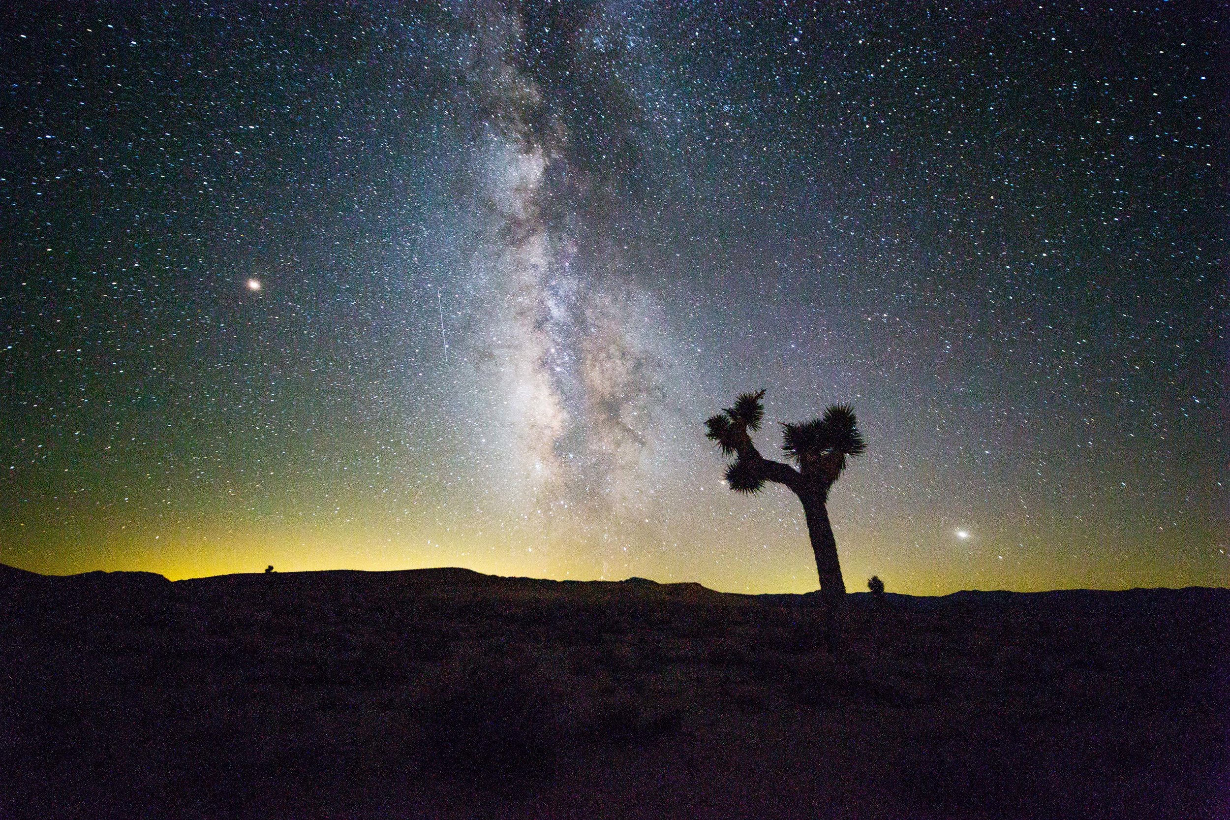 The center of the galaxy soars over a Joshua Tree outside of Death Valley