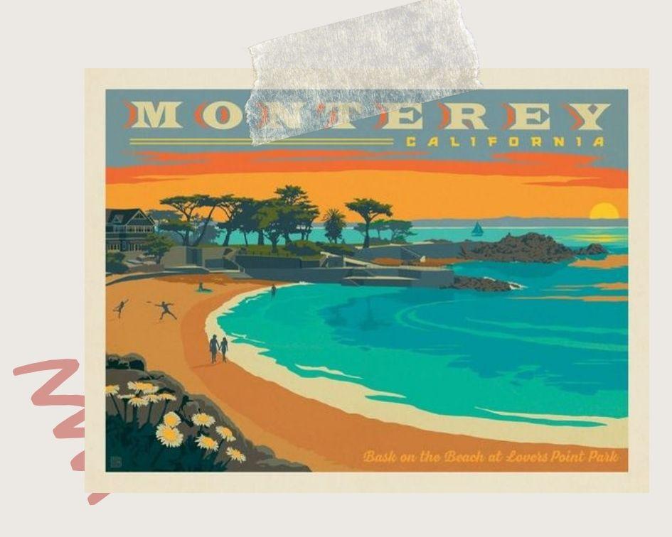 Monterey Bay, Travel, College Travel, Scuba Diving, Solo trip, exploring