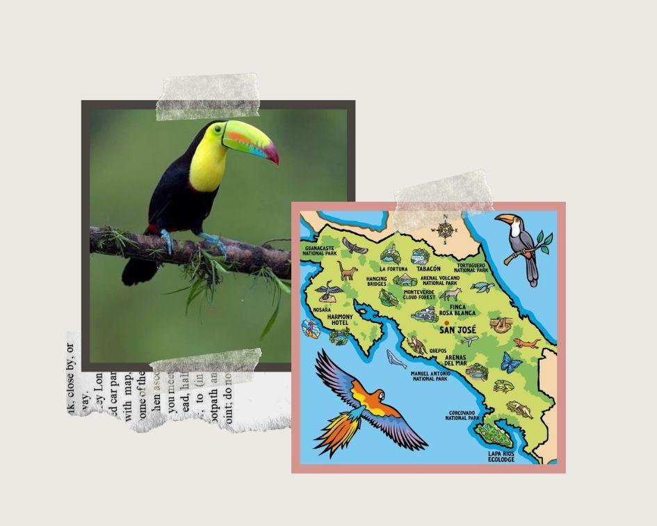Costa Rica , Travel, College Travel, Scuba Diving, Solo trip, exploring
