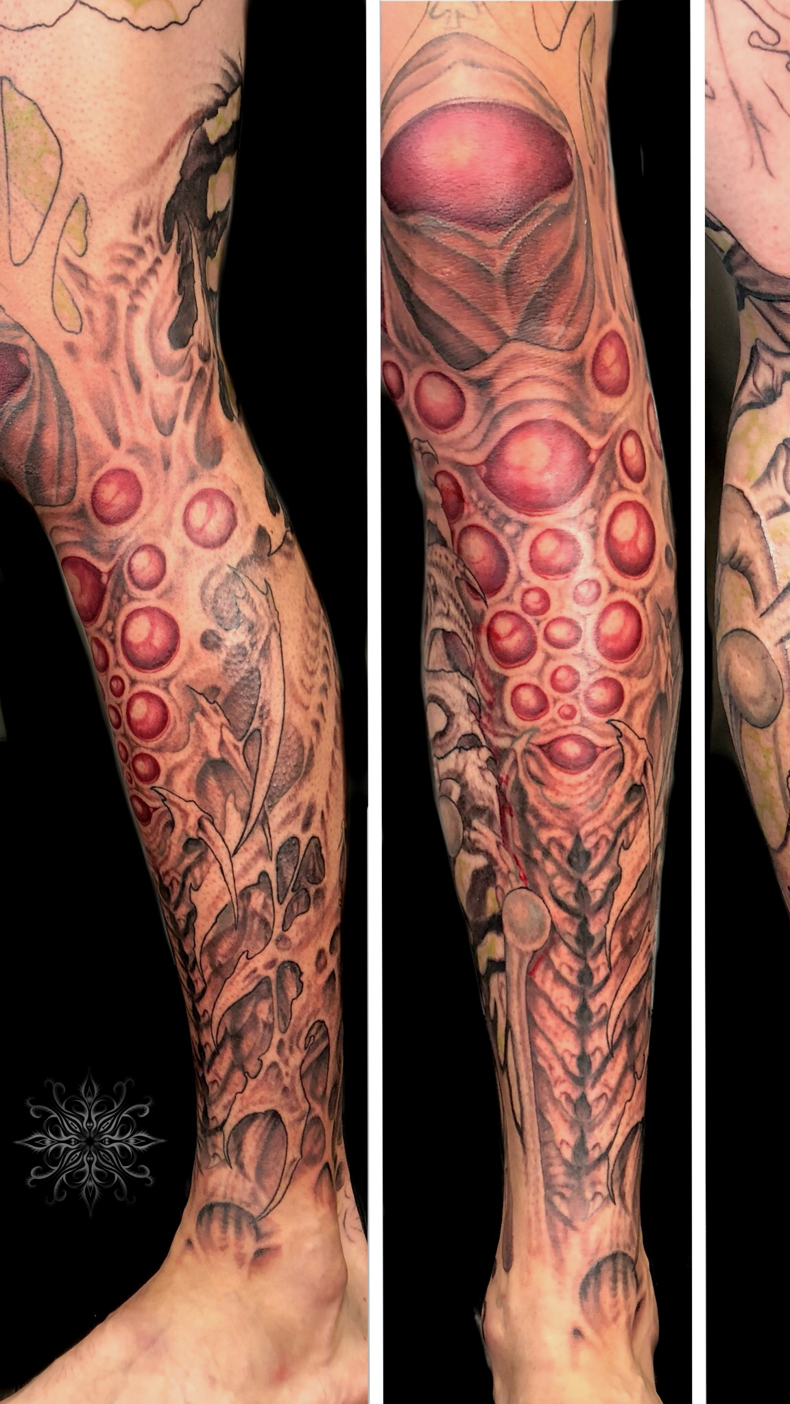 in+progress+bio+sleeve.jpg