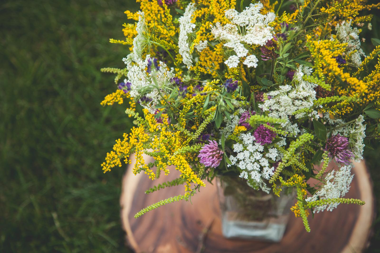 WildflowersPart2-sm-0541.jpg