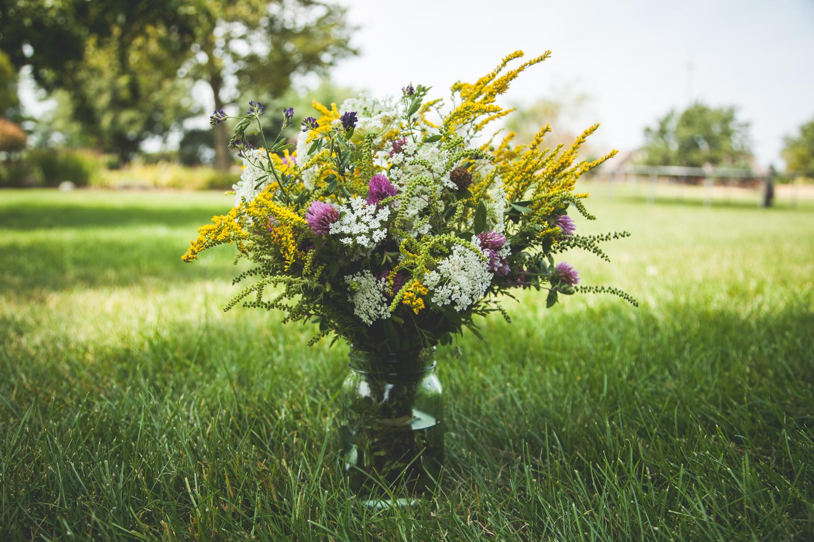 WildflowersPart2-sm-0551.jpg
