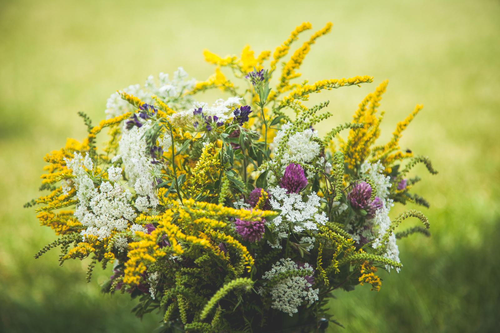 WildflowersPart2-sm-0539.jpg