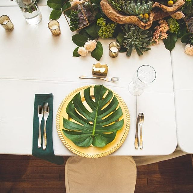 This wedding freaking killed it with the reception table decor - succulents overflowing in the center and the green theme carrying out with a classy gold accent. My inspiration for my home currently lol . . . . . . . . .⠀⠀⠀⠀⠀⠀⠀⠀⠀ #christydawn #christydawnphoto #bridalparty #bridesmaidsdresses #entrepreneurlife #succulents #weddingdecor #louisvillebride #loubride #louisvilleweddingphotography #louisvilleweddingphotographer #louisvilleengagement #theknotlouisville #kentuckywedding #theknotkentucky #kentuckyweddingphotographer #southernweddingphotographer #southernwedding #travelweddingphotographer #travelingweddingphotographer #loveauthentic #greenweddingshoes #outdoorwedding #elopementphotographer #destinationweddingphotographer #coloradowedding #coloradoweddingphotographer #mountainwedding #mountainweddingphotographer #mountainweddingphotography