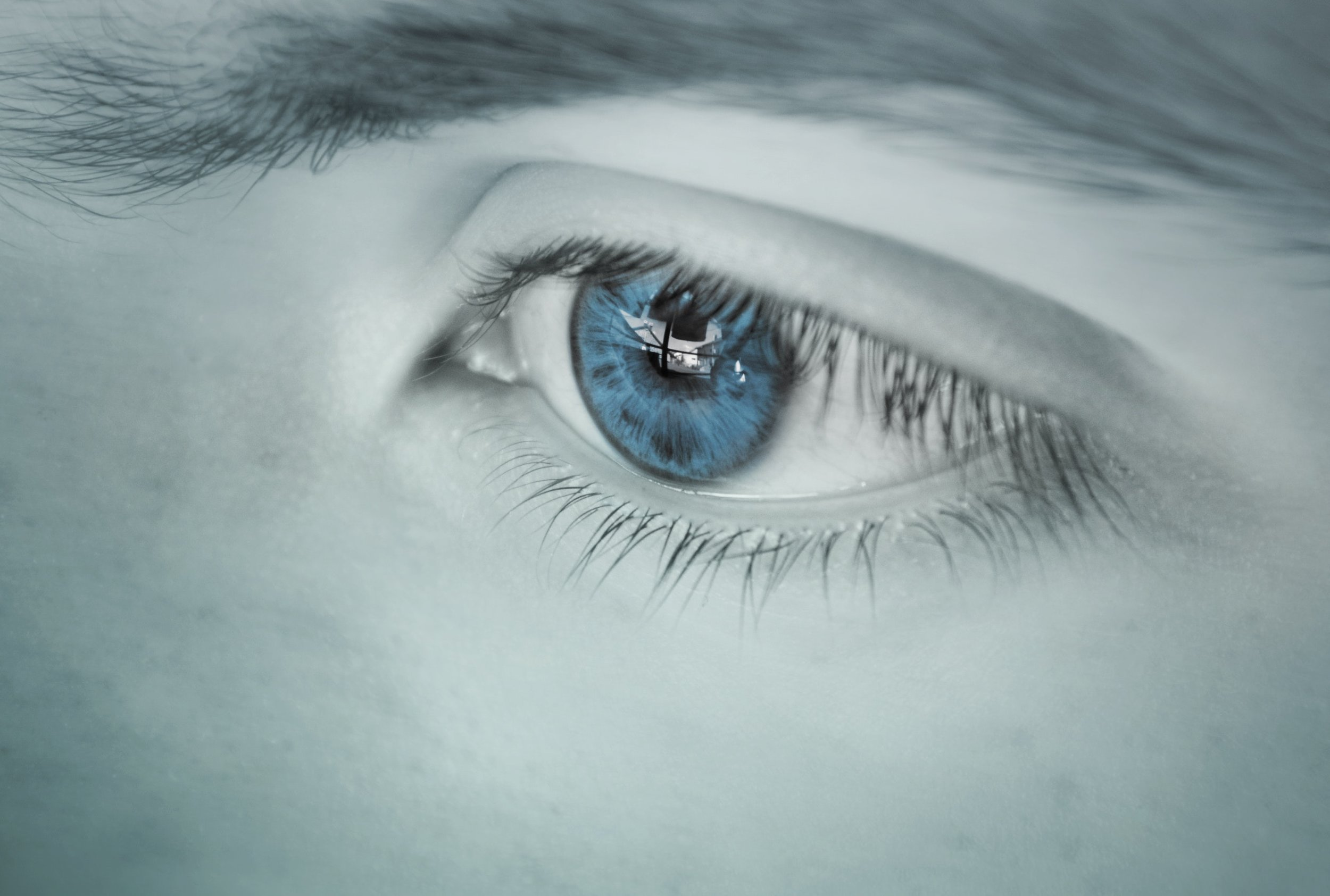 adult-beautiful-blue-color-281279.jpg
