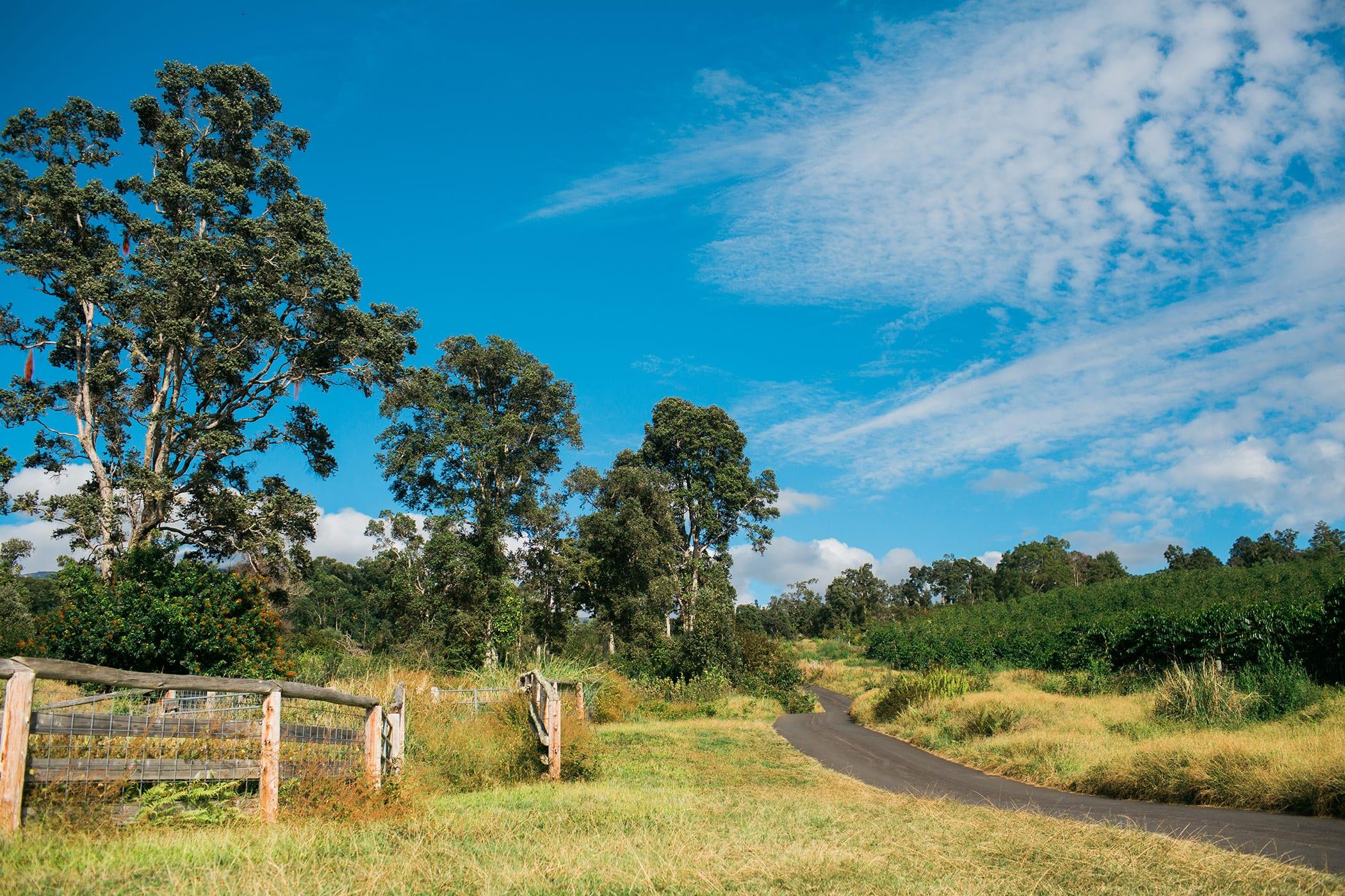Sunshower-Farms-About-The-Farm-Tour.jpg