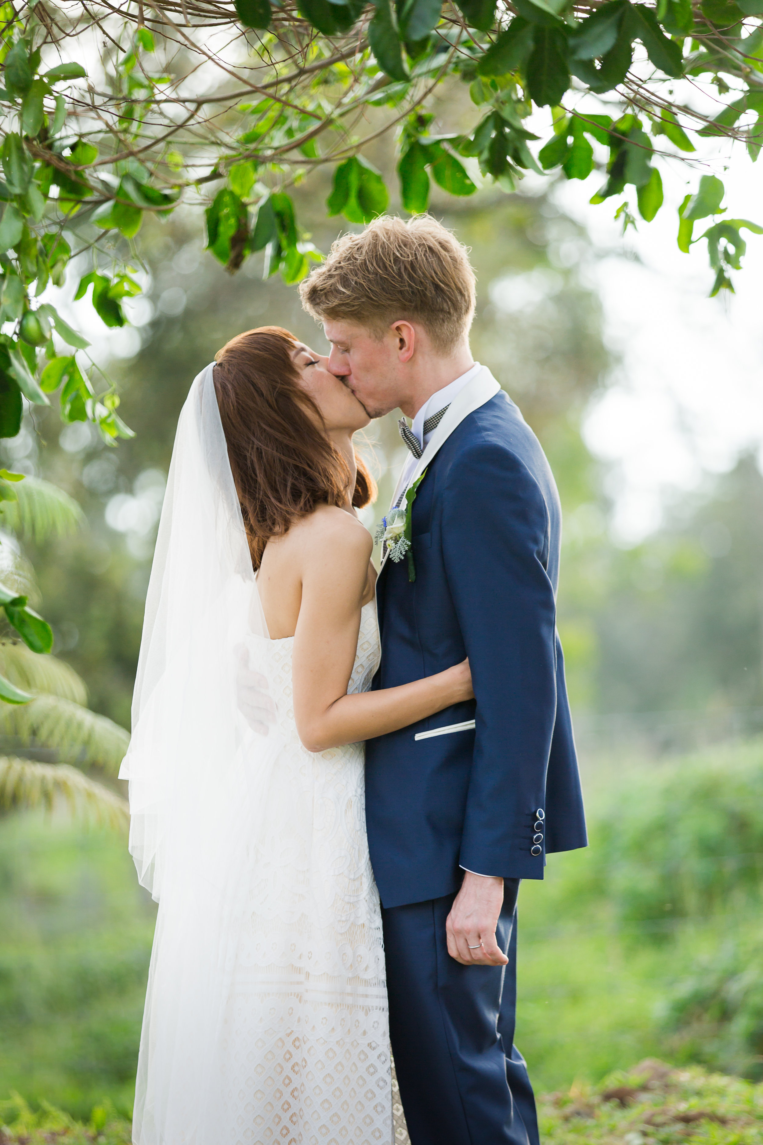 lilikoi vines wedding arbor