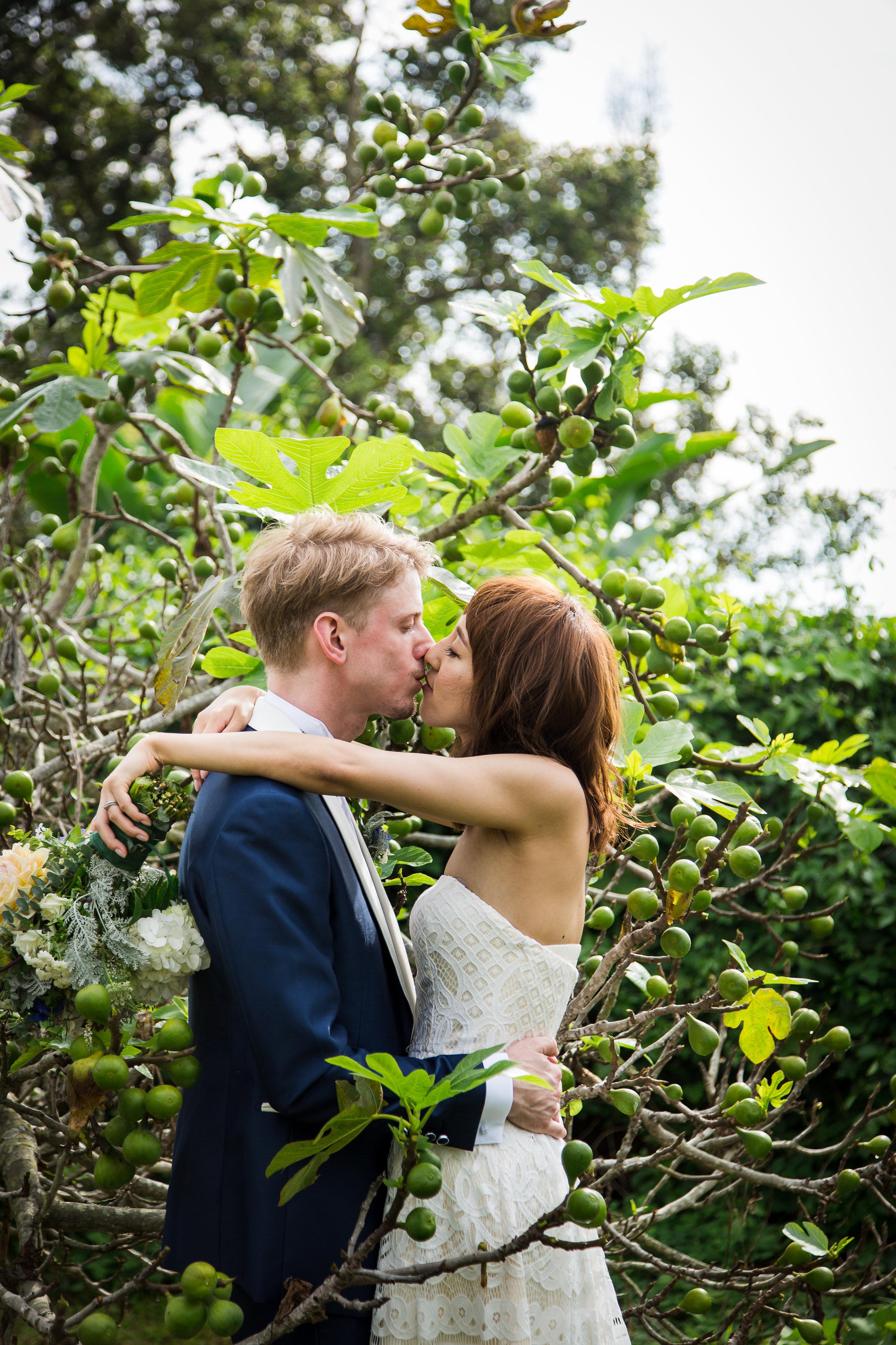 fig tree wedding hawaii