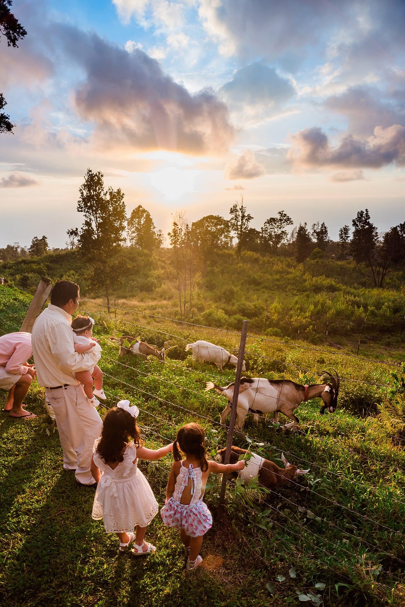 goats hawaii wedding venue