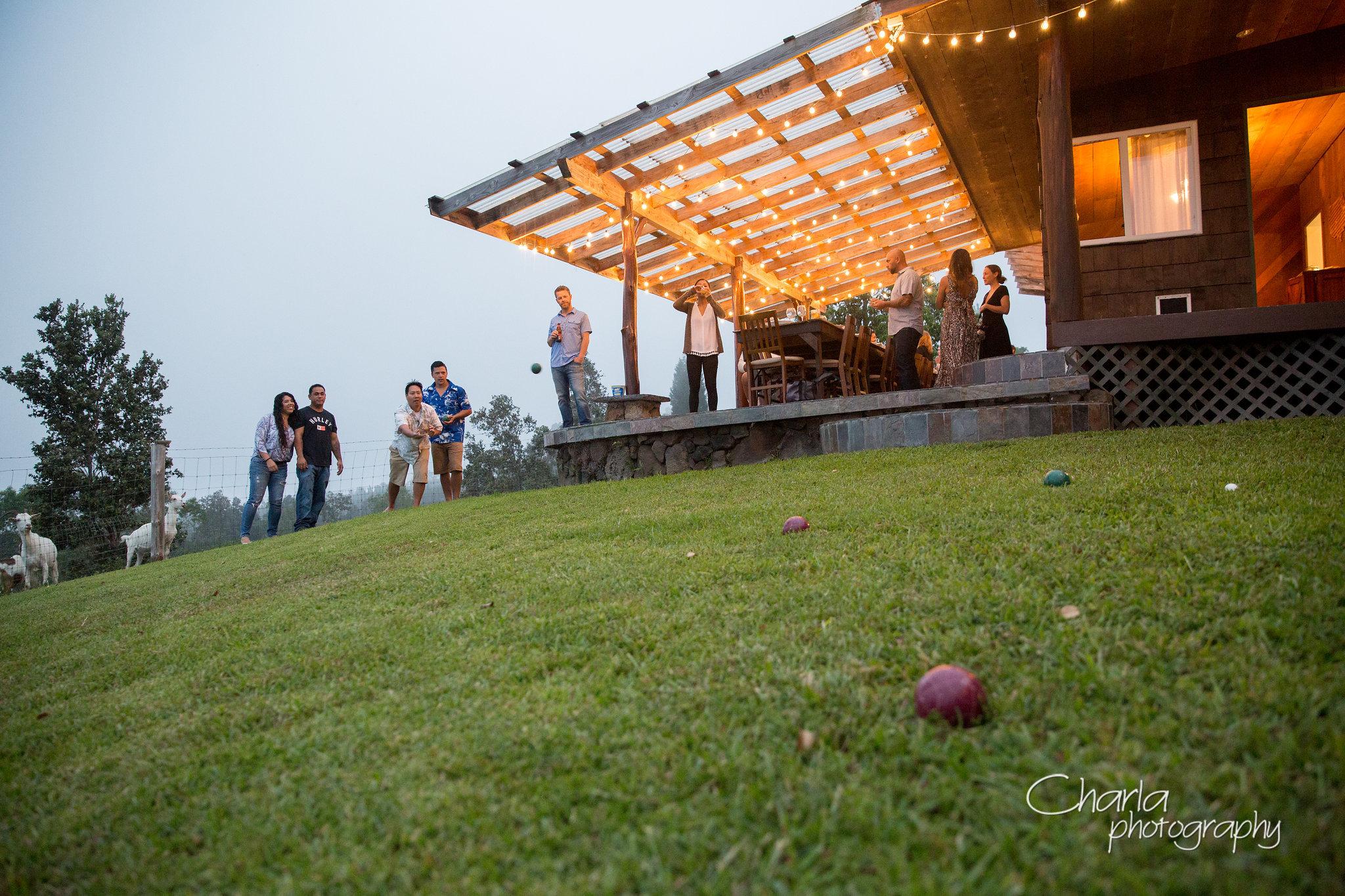 sunshower farms party
