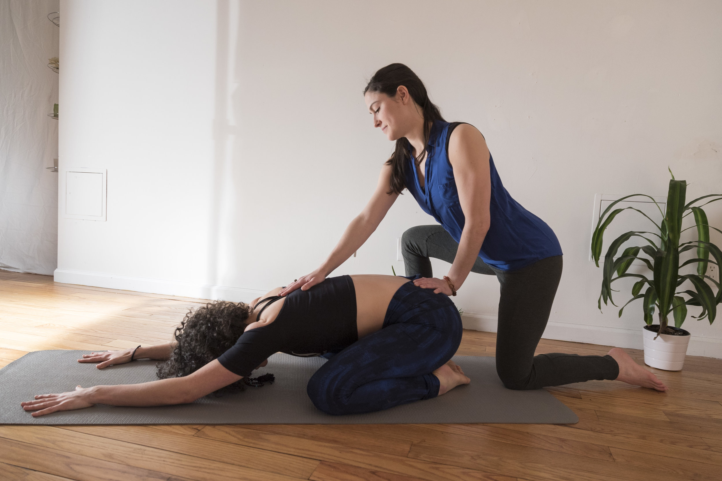Private Yoga - Customized Sessions to support your wellness goals, in the convenience of your own home